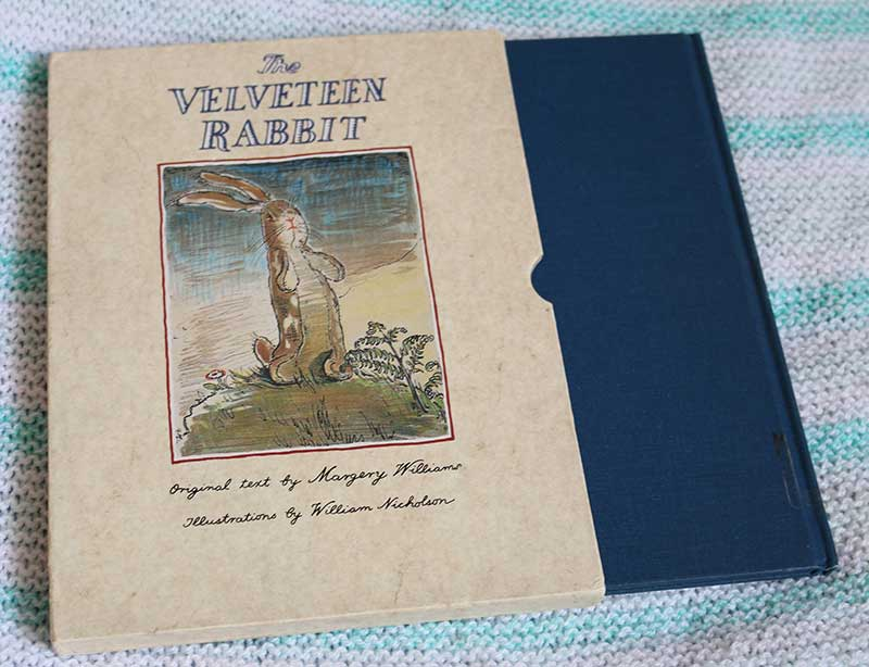 velveteen-rabbit-in-case