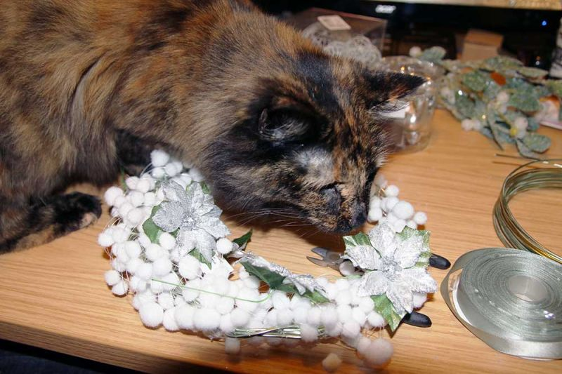 kitten-helping-wreath